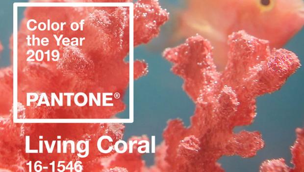 Living Coral: il colore 2019 di Pantone